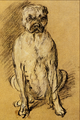 Study of a Bulldog - Thomas Gainsborough.png