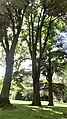 Sucrerie d'Eppeville, le parc du château 6.jpg