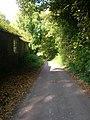Sullington Lane - geograph.org.uk - 1002692.jpg