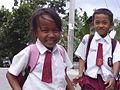Sumatran pupils.jpg