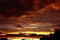 Summer-sunset - Virginia - ForestWander.jpg