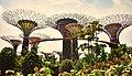 Supertrees, Singapore (27428306290).jpg