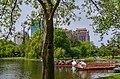 Swan Boats at Boston Public Garden.jpg