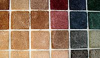 Swatches of carpet 1.jpg