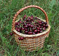 Sweet cherries in basket 2018 G1.jpg
