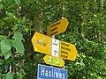 Swiss Hiking Network – Guidepost – Eggwald.jpg