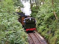Talyllyn Railway in the woods.jpg