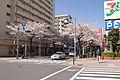 Tama-Plaza Station 08.jpg