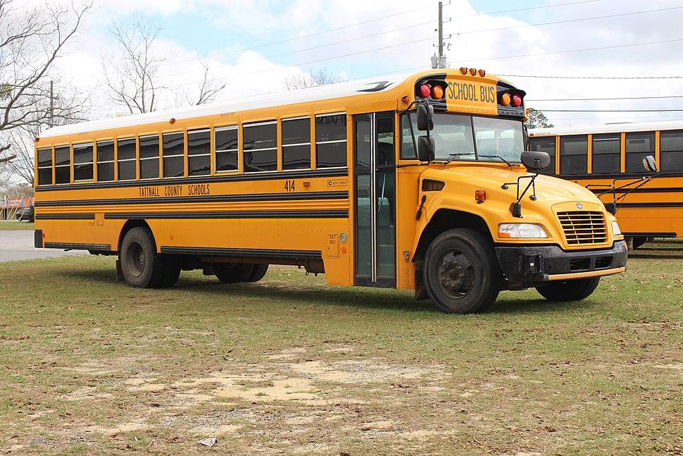 Tattnall County School bus, Reidsville 2