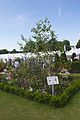 Tatton Park Flower Show 2014 007.jpg
