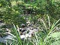 Tawangmangu 2009 Bennylin 088.jpg
