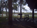 Taylor lake, largo, florida 013.jpg