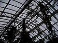 Teplice, skleník Tropicana, tropický skleník, střecha a větrníky.jpg