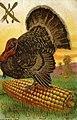 Thanksgiving Day (NBY 2332).jpg