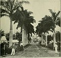 The Cuba review and bulletin (1906) (14766401562).jpg