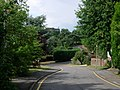 The Dene - Sevenoaks - geograph.org.uk - 218958.jpg