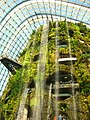 The Fall in the Cloud Forest, Gardens by the Bay, Singapore - 20140513-02.jpg