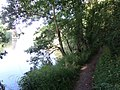 The Thames by Ankerwyck on the Buckinghamshire Way.jpg