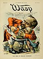 The Wasp 1890-07-19 cover The Irish in English chancery.jpg