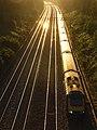 The railway, Sonning Cutting - geograph.org.uk - 531935.jpg