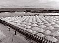 The salt pans, the oldest resource of the Cagliari.jpg