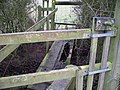 There's a hole in my bridge^ - geograph.org.uk - 1680011.jpg