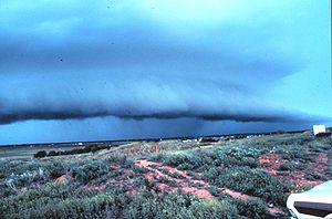 Outflow boundary - Thunderstorm with lead gust front near Brookhaven, New Mexico, United States, North America. The gust front is marked by a shelf cloud.