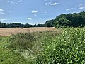 Tilled unplanted field at TNC Sunny Valley Preserve Farm New Milford CT IMG 5024.jpg