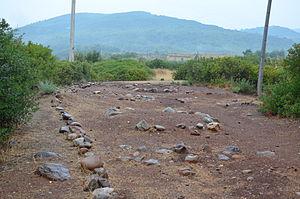 Timpone della Motta - The Macchiabate necropolis at the foot of the Timpone della Motta