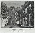 Tintern Abbey (1132607).jpg