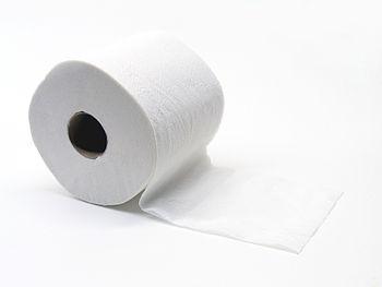 Toilet paper Español: Papel higiénico
