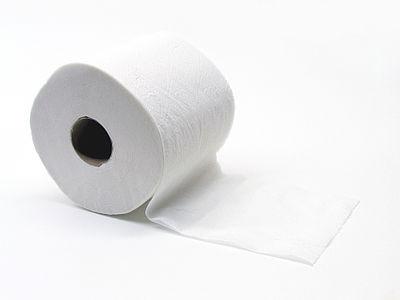 Toiletpapier (Gobran111).jpg