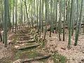 Tomb of Suminokura Soan - Adashino-nenbutsuji - DSC06330.JPG