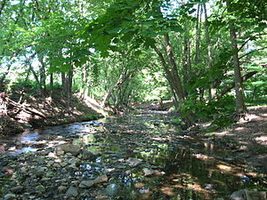 Cheltenham Township, Montgomery County, Pennsylvania - Tookany Creek played an important role in the founding of Cheltenham
