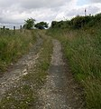 Track from Nant-yr-hebog farm - geograph.org.uk - 1383447.jpg