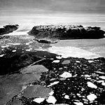 Tracy Glacier, Calving Ice Cap Distributaries, July 24, 1964 (GLACIERS 1704).jpg