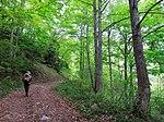 Trail (9047456680).jpg
