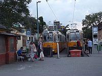 Trams in Kelenföld tram terminus 2014.jpg