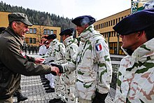 Chasseurs Alpins Wikipedia
