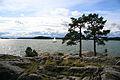 Turku - Ruissalo Island (6119923392).jpg