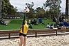 USF sand Volleyball 2016 season @ Stanford (25619554122).jpg