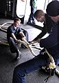 US Navy 060106-N-7981E-022 Boatswain's Mate Seaman John Armstrong holds down a mooring line as other crew members tighten a new splice.jpg