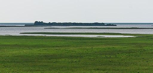 Uitzicht vanaf uitkijktoren over het Lauwersmeergebied. Locatie. Nationaal Park Lauwersmeer 02