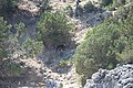 Unnamed Road, Ithaki 283 00, Greece - panoramio (2).jpg