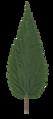 Urtica scanned leaf front side.png