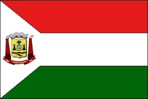 Várzea Grande, Mato Grosso - Image: Várzea Grande Flag