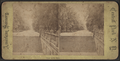 View on the Mall, from Robert N. Dennis collection of stereoscopic views 2.png