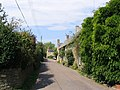 Village street in Uploders - geograph.org.uk - 532482.jpg