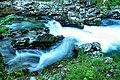 Vintgar Gorge (34971608024).jpg
