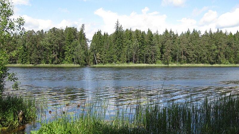 Pilt:Vissi järv.JPG